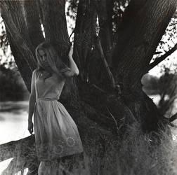 Behind the grey. by noritsu-koki
