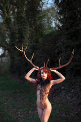 Forest Spirit5. by noritsu-koki