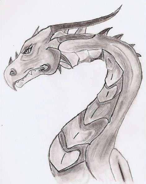 Side dragon by chocolate-freak