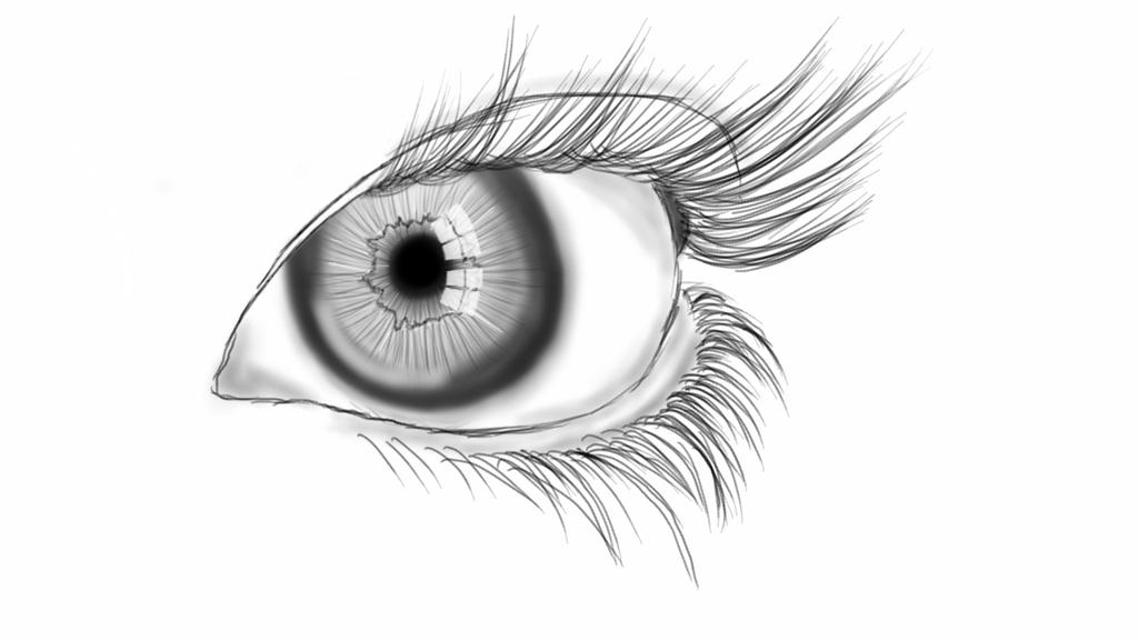 Line Drawing Eye : Eye line art by bitts on deviantart
