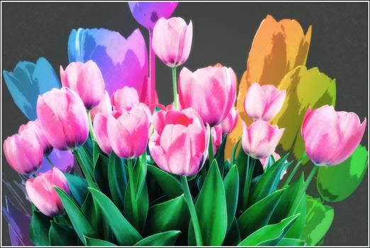 Colorful Envoys