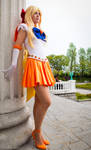 Sailor Venus: Pillar of Strength