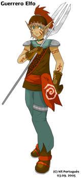 Guerrero Elfo - Elf Soldier by pokesafari