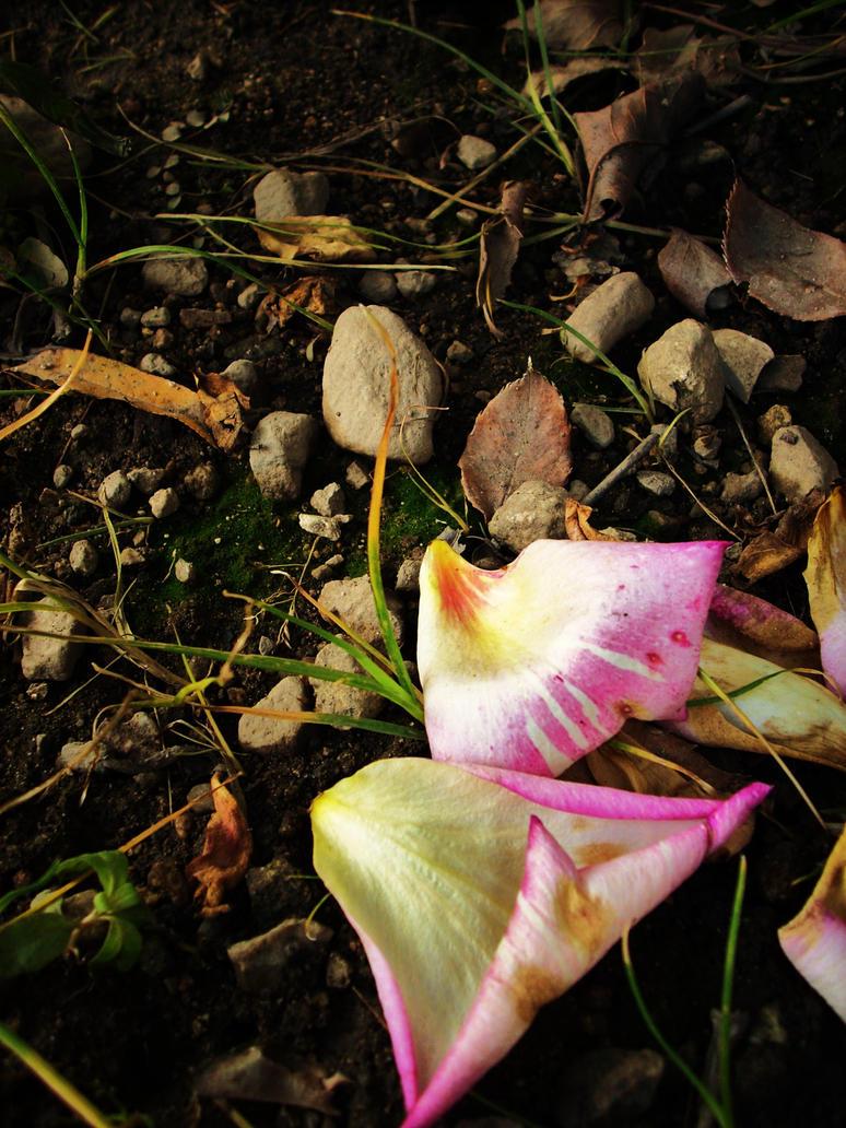Fallen by VirginiaRoundy