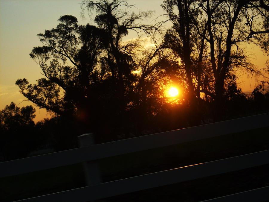 Good Morning by VirginiaRoundy