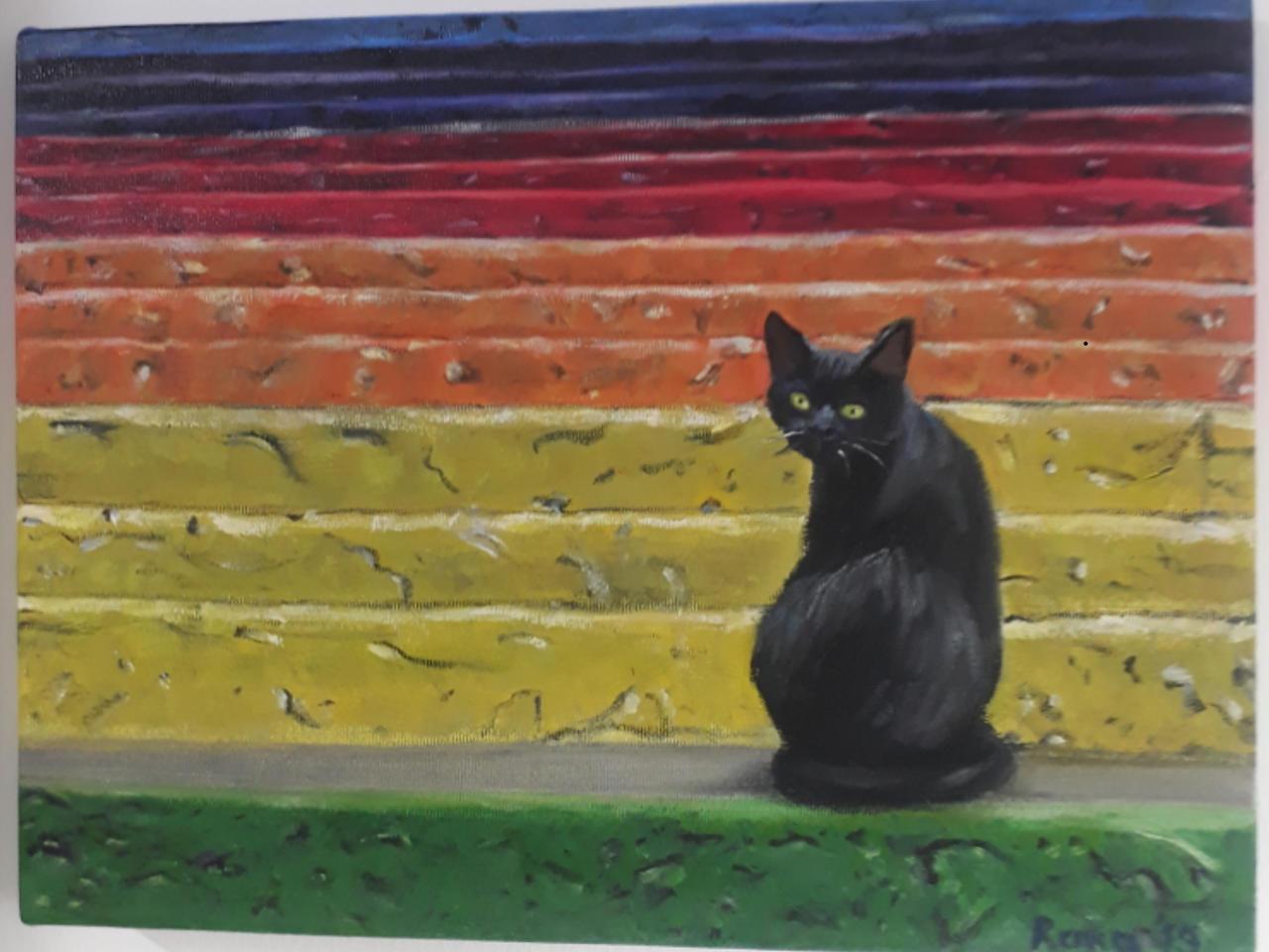 black cat in colors