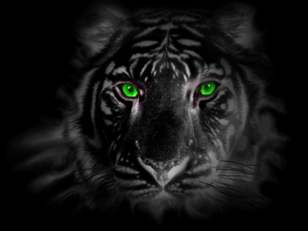 green eye tiger by tigerallied