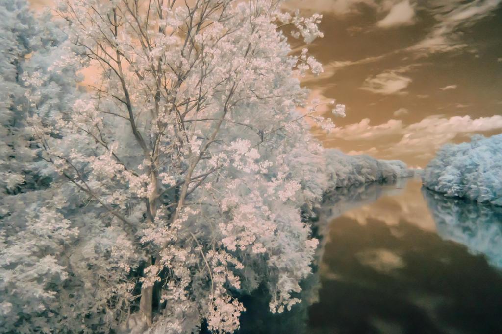 Leipheim Donau Infrarot / Infrared by AGerst