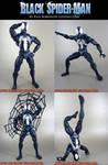 Custom Black Spider-Man