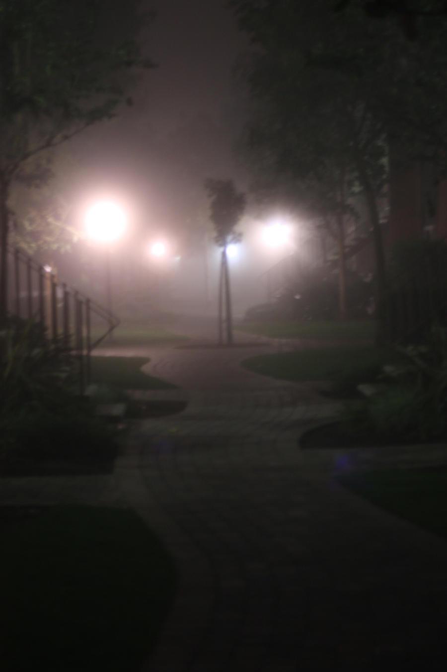 Fog by pinknfuzzy4711