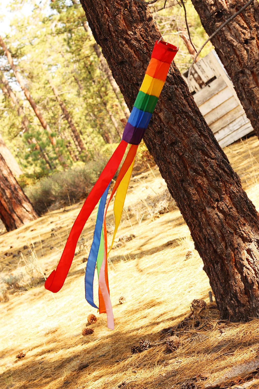 Rainbow Flag by pinknfuzzy4711