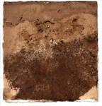 Texture - Tea Paper 04