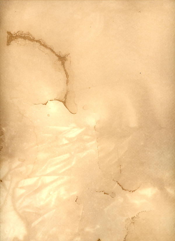 Texture - Tea Paper 08 by shadowgirls-stock