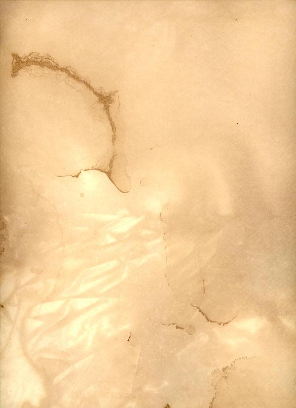 Texture - Tea Paper 08