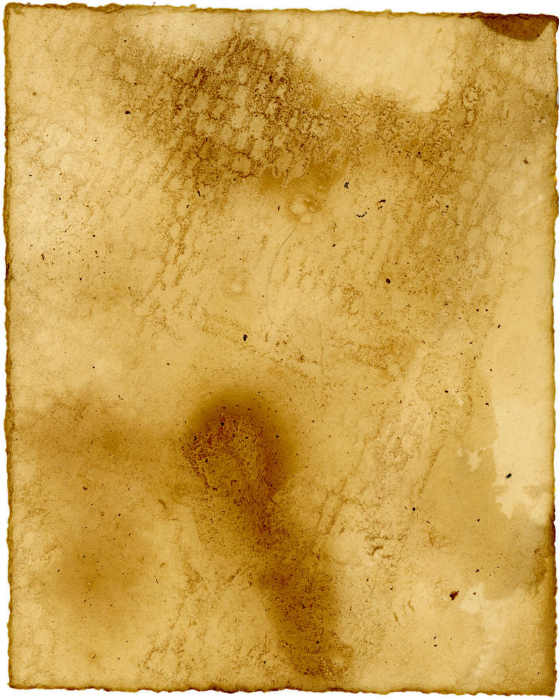 Texture - Tea Paper 26 by shadowgirls-stock