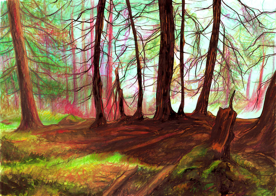 Colorful Forest by sallymarsh on DeviantArt