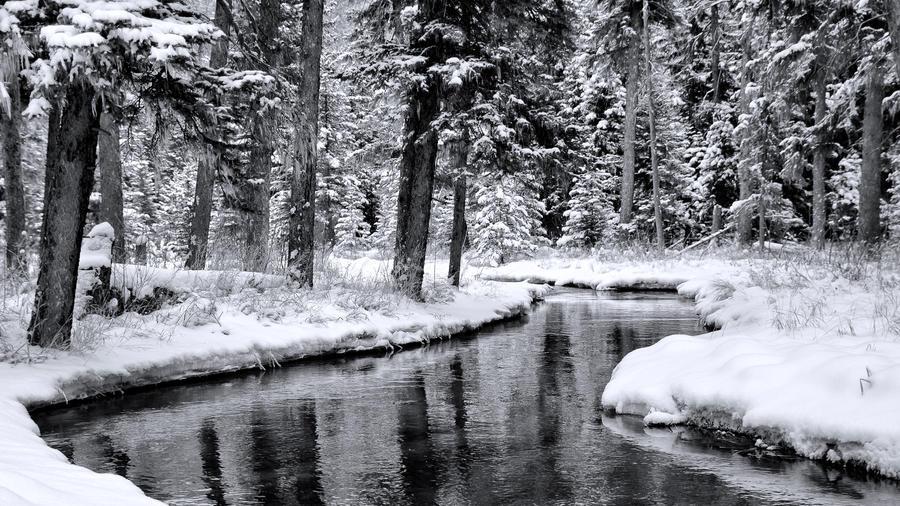 Downstream by CharlieA-Photos