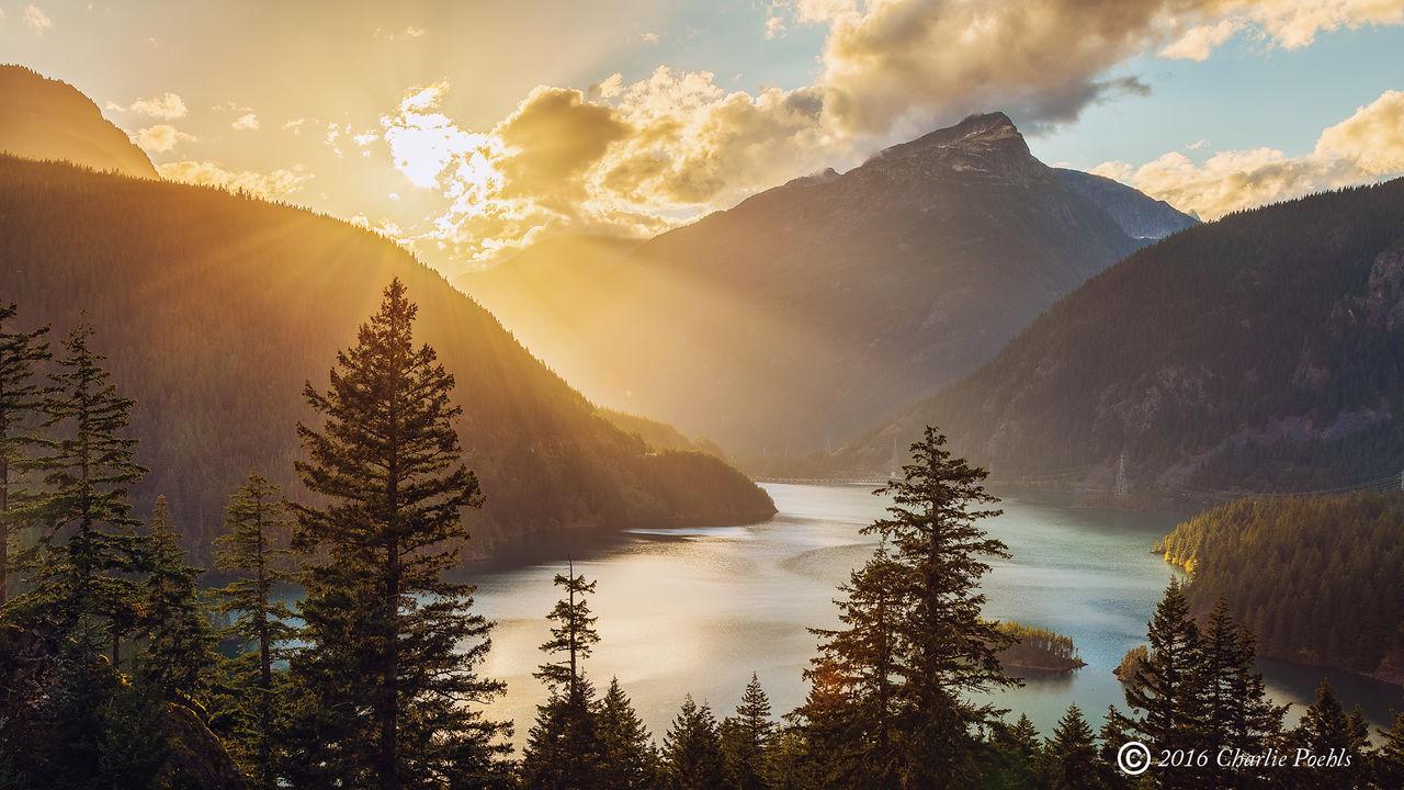 Cascades of Light