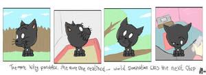..that little black cat.. by mkhoddy
