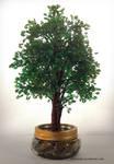 Oak Tree - Chene