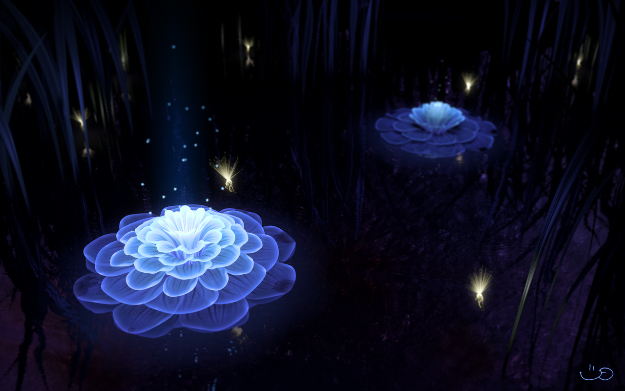 Bloom by dlax1