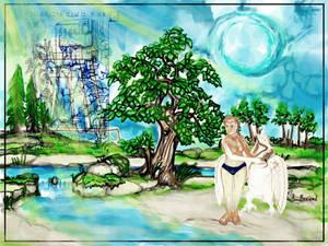KINS TREE WISH PANORAMA 04122019v46A