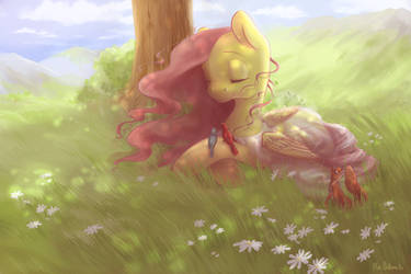 Commission 2.~ Strainer~ Fluttershy by WolfieDrawie