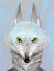 Winter Coat by WolfieDrawie