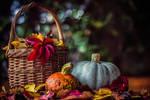 A Colorful Autumn