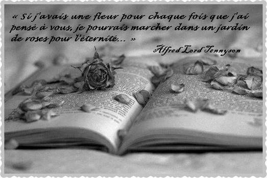 Citation de Alfred Lord Tennyson