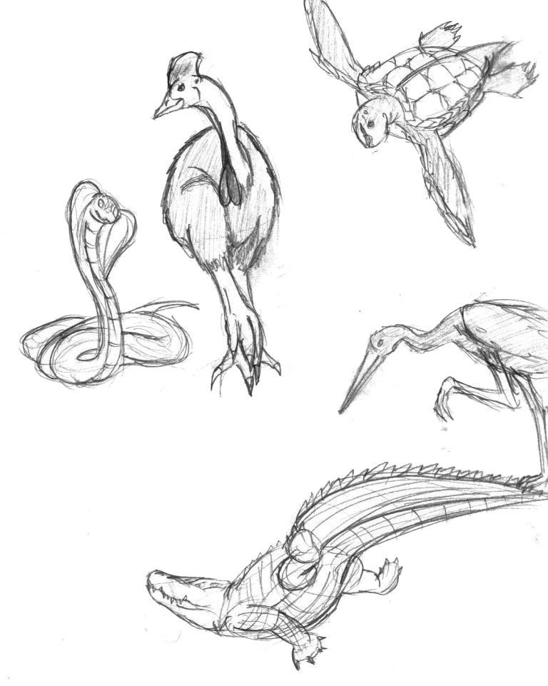 Avians and Reptiles