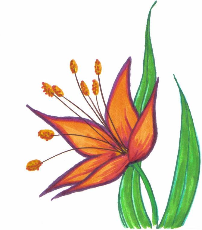 Sharpie Flower by lydia-seguin on DeviantArt Sharpie Art Flowers