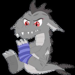 Socks should not be worn on Draco's feet