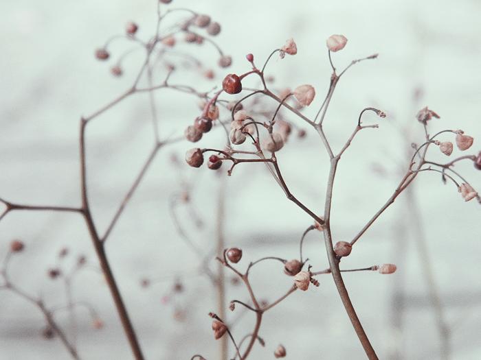 Cold by beri-cram