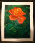 Orange Rose by FineArtByMegan