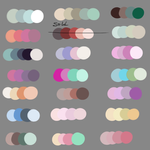 Color Pallet Adopts5