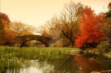 Autumn Pond by YOSHIMETAL