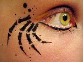 Spider Eye by caffwin