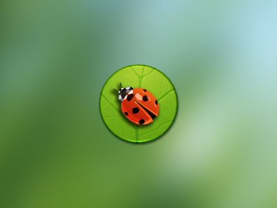 Ladybird by JackieTran