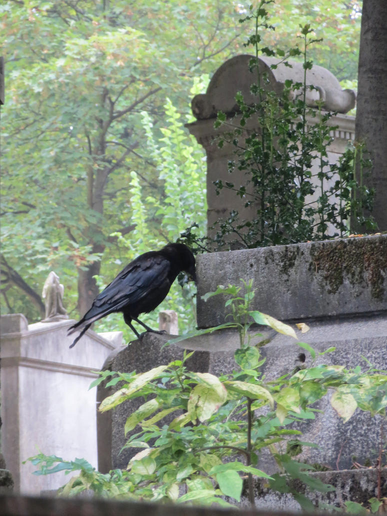 Graves and The Crow by Ptolemeia