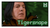Tigersnape Stamp by RubberSoul4