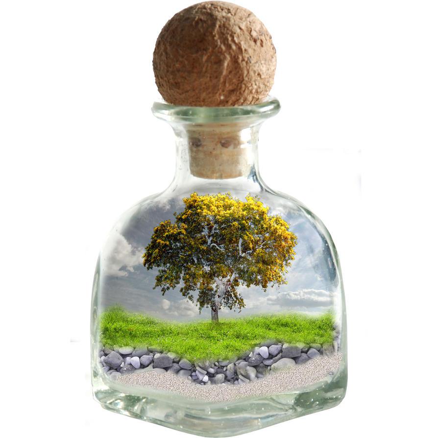 Jar by Cindy-trekfan