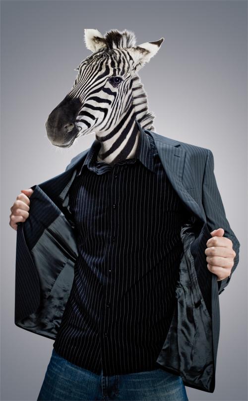 designsafari's Profile Picture