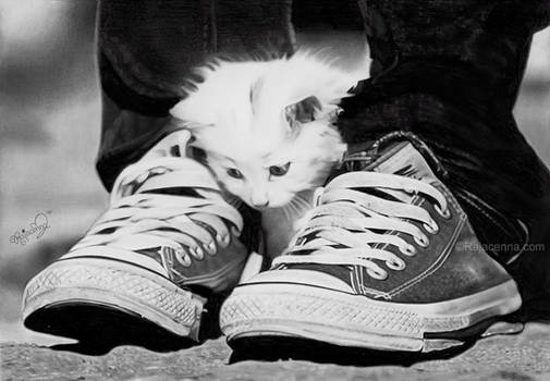 Caught between two shoes
