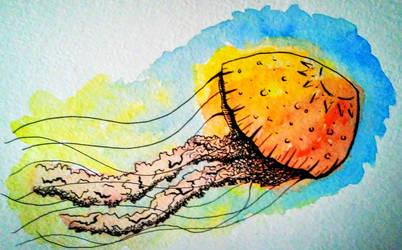 Jellyfish Art by JR-Sketcher