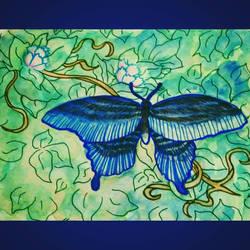 Butterfly by JR-Sketcher