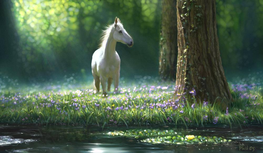 Horse in meadow by paler123