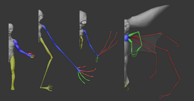 Asteromorph Limbs Evolution (All Tomorrows)