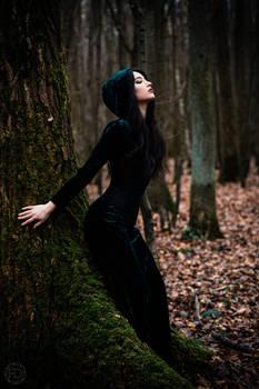 Secret woods