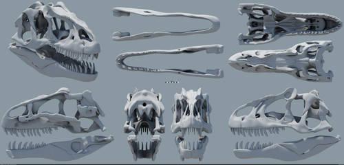 Allosaurus fragilis skull by MithosKuu